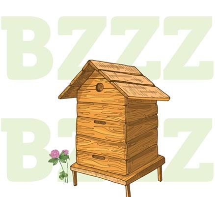 Vente essaims, une ruche